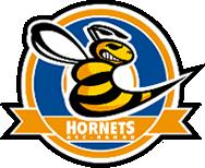 logo-hanau-hornets