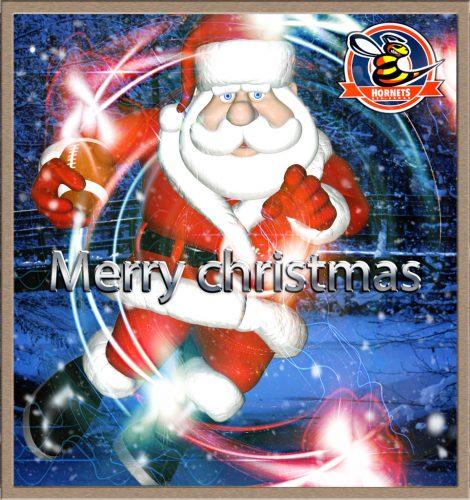 hornets_christmas_2015k